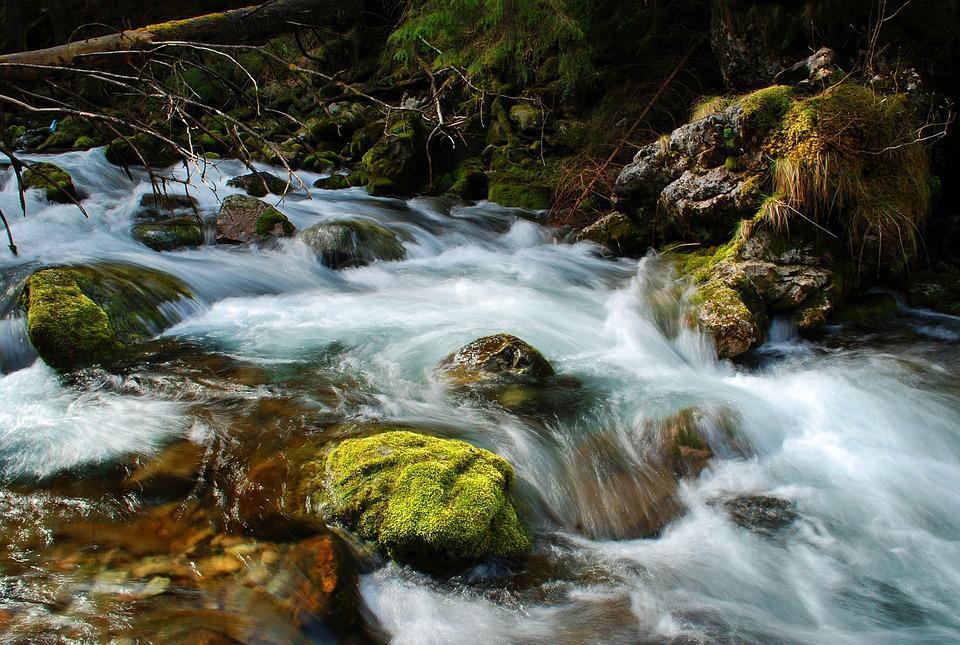 Rio - Água - Terminando a simpatia, o que fazer com o material utilizado?