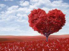 5 Rituais e Simpatias para melhorar a autoestima e Perder o Medo de Relacionamentos Sérios