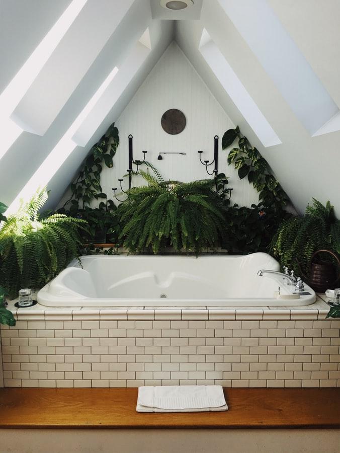 Banho poderoso de ervas para repor energias positivas