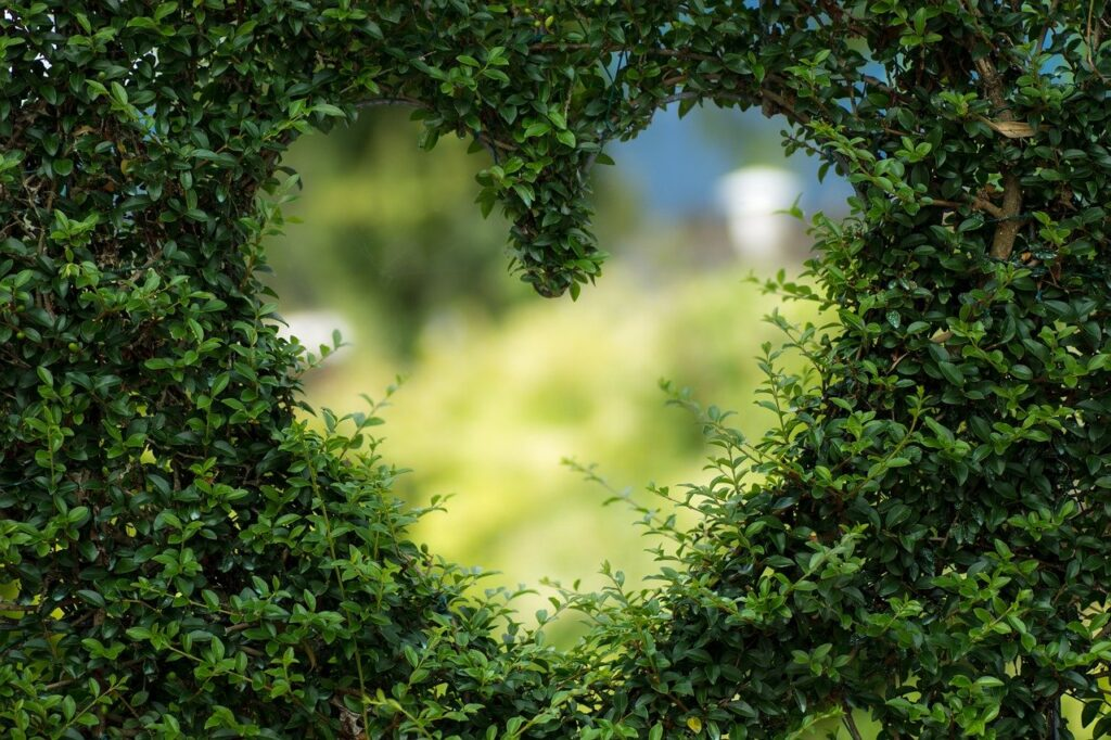 Simpatias Fáceis para o Amor